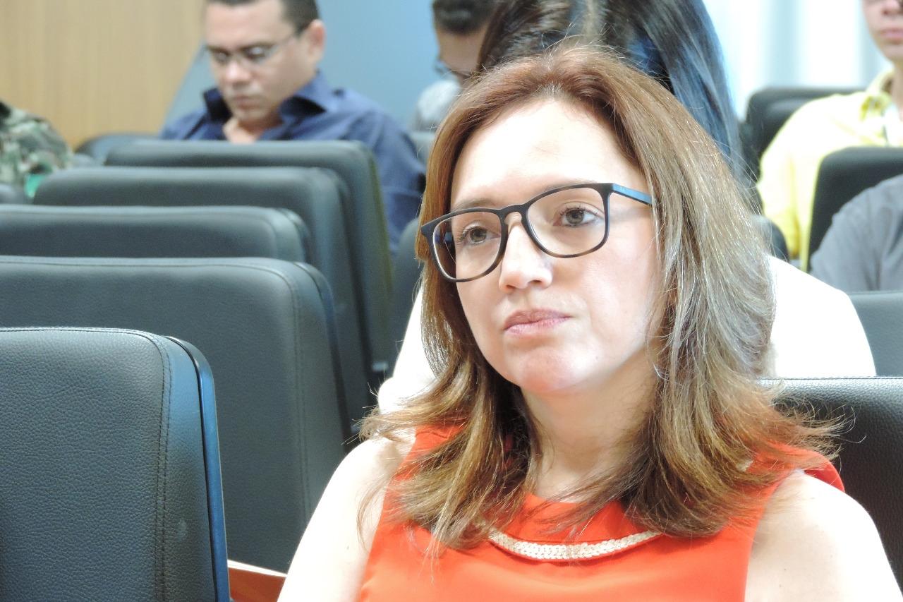 Promotora de Justiça de Valença assume o comando da Gaeco no Piauí