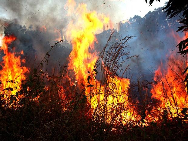 Queimadas afetam meio ambiente e saúde de moradores em Valença do Piauí